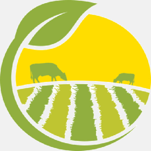 logo saveurs-terroir